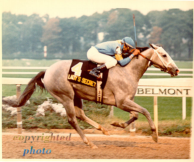 Lady's Secret Champion Daughter of Secretariat