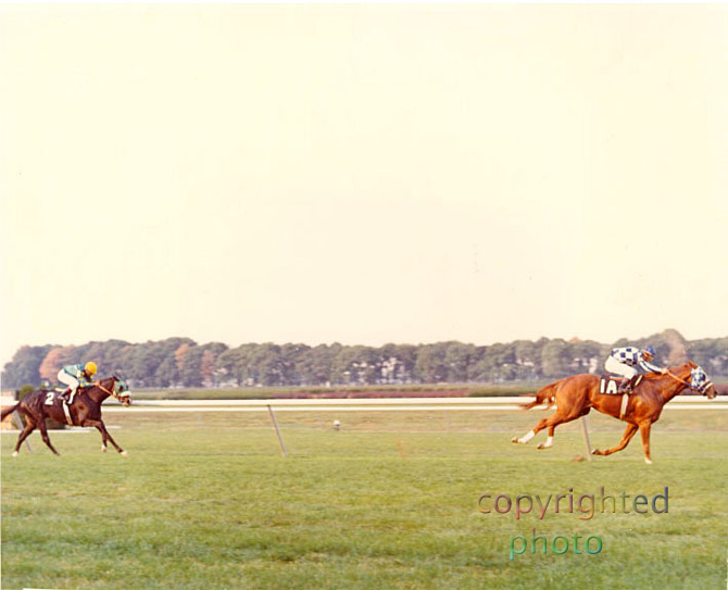 Secretariat – The Man O' War Stakes 1973