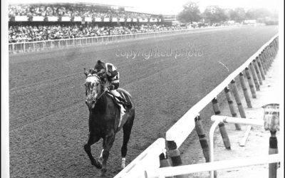 Spectacular Bid – The Walkover – Woodward Stakes